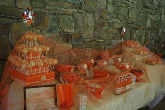 Creekside Grove Catering Candy Display